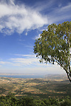 Israel, Upper Galilee, a view of the Sea of Galilee from Mitzpe Menahem in Moshav Amirim