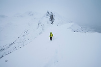 Single female hiker climbs narrow ridge through deep snow on ascent of Matmora mountain peak, Austvågøy, Lofoten Islands, Norway