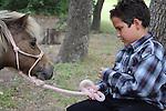 Havens Horses Ethan