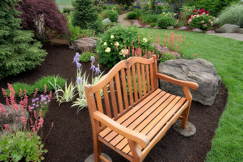 Bench in Adlemans Peony Garden. Salem, Oregon