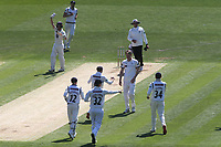 Yorkshire players run to congratulate Steven Patterson after taking the wicket of Kent's Zak Crawley caught and bowled during Kent CCC vs Yorkshire CCC, Specsavers County Championship Division 1 Cricket at the St Lawrence Ground on 15th May 2019