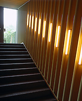The tubular lighting illuminating the staircase is both decorative and practical