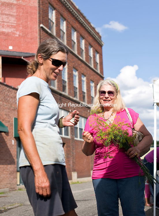 Torrington, CT- 26 August 2015-082615CM03-  Lauri Szpak, with West Street Farm of Goshen, left, chats with Christa Nadeau of Torrington Keep It Local farm to table event on Franklin Street in Torrington on Wednesday.   Matt Beard, executive chef for House of Bread soup kitchen in Hartford, provided a variety of dishes using locally gown products and ingredients.     Christopher Massa Republican-American