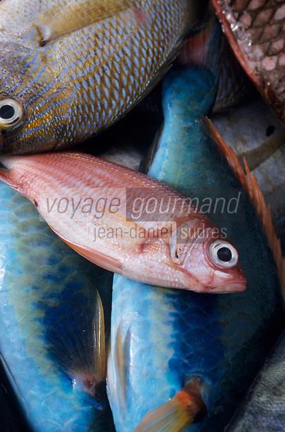Europe/France/DOM/Antilles/Petites Antilles/Guadeloupe/Pointe-à-Pitre : Marché aux poissons - Etal d'une marchande de poissons tropicaux
