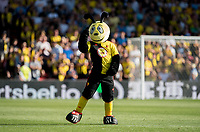 Harry the Hornet, Watford mascot pre match during the Premier League match between Watford and Arsenal at Vicarage Road, Watford, England on 16 September 2019. Photo by Andy Rowland.