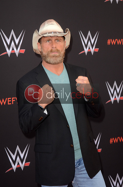 Shawn Michaels<br />