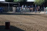 MFHS Barrels Rider 317