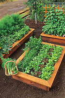 Raised vegetable beds in front yard kitchen garden by country road.