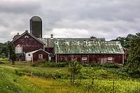 Dairy Barn in Door County Wisconsin.