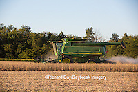 63801-07120 Farmer harvesting soybeans, Marion Co., IL