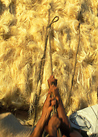 Workers tie up sisal thread for transportation. Labor, Bahia, Brazil. Arm, Arms, hands, Arrangement, Brute force, Close up, Close-up, Collaboration, Collective, Community, Concept, Concepts, Contemporary, Cooperation, Coordinated, Coordination, Detail, Details, Effort, Efforts, Group, Groups, Human, Male, Man, Many, Men, Men (only), Strength, Team, Teams, Teamwork, Together, Togetherness, Unity.