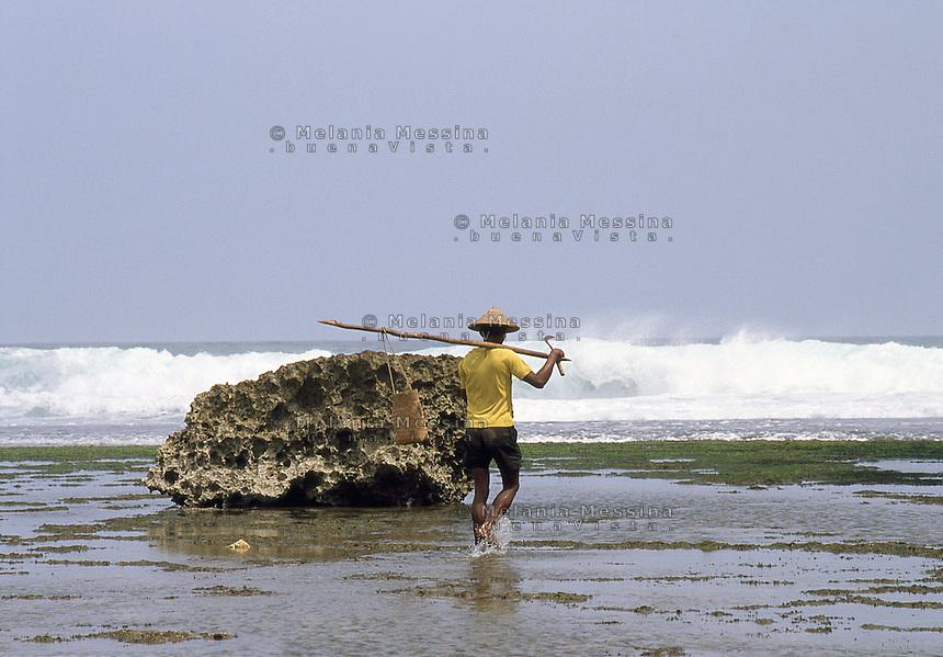 Indonesia, Java island.<br /> Indonesia, isola di Giava