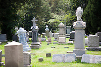 Tomestones in a cemetery