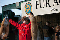 An Alaska Trappers Association auction assistant displays fox pelts during the Rondy fur auction in downtown Anchorage.