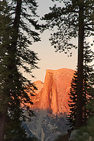 Sunset on Half Dome through the trees from the Glacier Point perspective