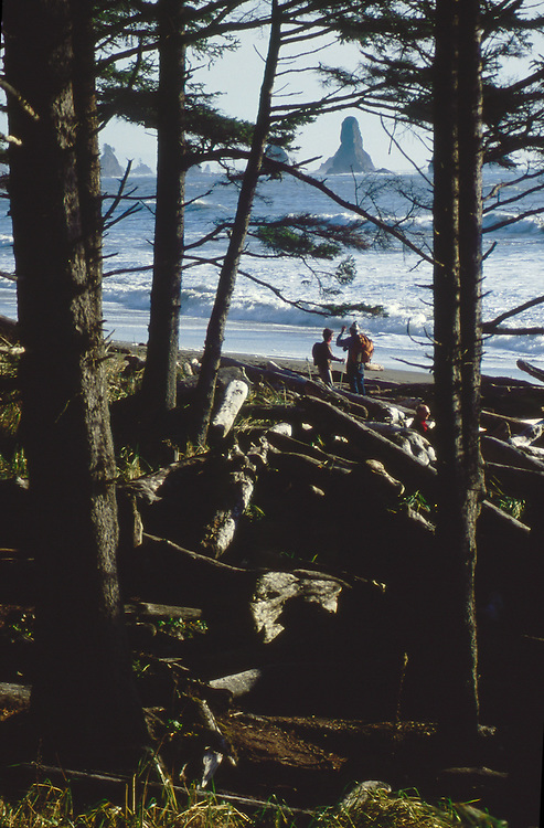 Olympic National Park, couple hiking, Third Beach, La Push, coastal forests, Washington State, Pacific Northwest, Pacific Ocean, Northwest coast, Olympic Peninsula, North America, USA,.