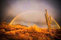 Double Happiness - Arizona - Double Rainbow after the storm