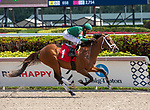 February 29, 2020: #1 I'll Fight Dempsey, with jockey John Velazquez on board,  breaks his maiden on Fountain of Youth Stakes Day on February 29th, 2020 at Gulfstream Park in Hallandale Beach, Florida. LizLamont/Eclipse Sportswire/CSM