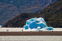 An iceberg, from Grey Glacier, rests in the waters of Lago Grey in Torres del Paine, Chile.