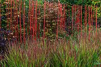 """France, Domaine de Chaumont-sur-Loire, Festival International des Jardins 2018 sur le thème """"Jardins de la pensée"""", jardin """"réflexion faite"""""""
