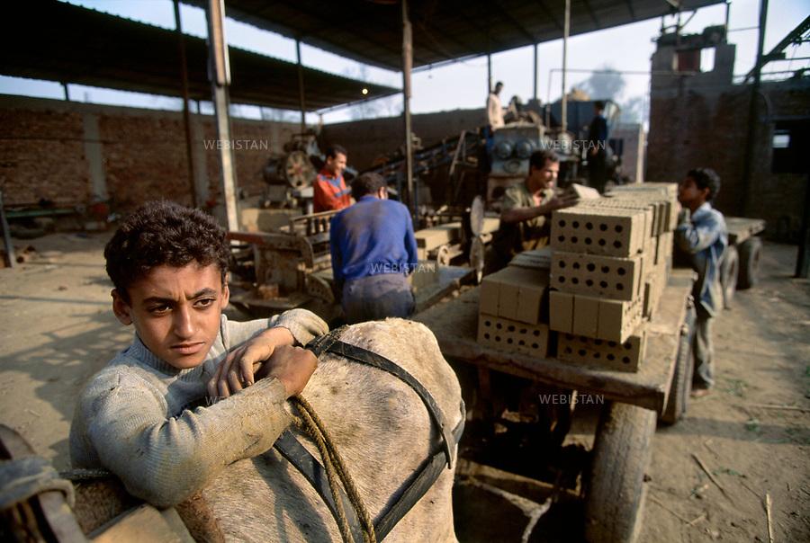 Egypt. In Tabakh's brickyard, near Zifta. 1996. A child next to a car full of bricks pulled by a donkey..Egypte. Dans la briqueterie de Tabakh, pres de Zifta. 1996. Un enfant pres d'une carriole pleine de briques tiree par un mulet...