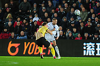 Matt Smith of Millwall battles with Mike van der Hoorn of Swansea City during the Sky Bet Championship match between Swansea City and Millwall at the Liberty Stadium in Swansea, Wales, UK. Saturday 23rd November 2019