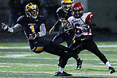 Grand Blanc at Clarkston, Varsity Football, 10/27/17