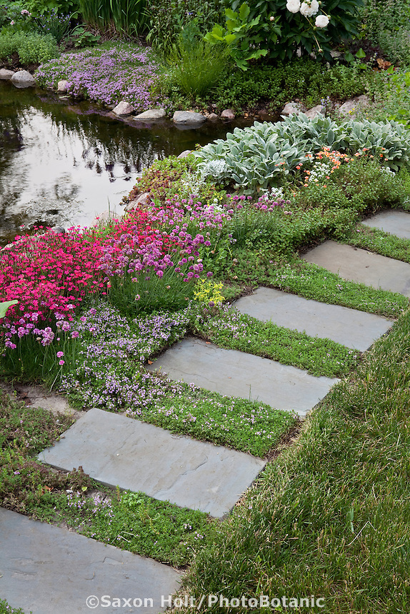 Flagstone stepping stone path ppavers between lawn and flowering perennial groundcovers;  Barrington Hills, Illinois garden