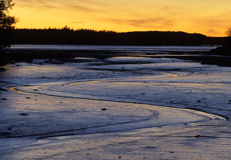 Sunset over Machias Bay mudflats near Cutler, Maine