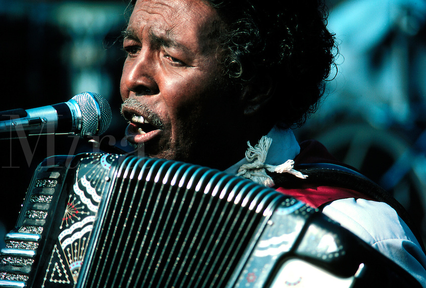 Musician playing the accordion