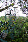 Canopy Tower,Tiputini