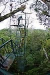 Canopy Tower,Tiputini