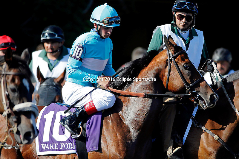 ARLINGTON HEIGHTS, IL - AUGUST 13: Wake Forest #10, ridden by Flavien Prat, during the post parade before Arlington Million at Arlington International Racecourse on August 13, 2016 in Arlington Heights, Illinois. (Photo by Jon Durr/Eclipse Sportswire/Getty Images)