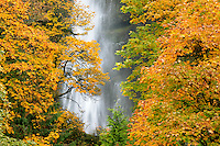 Mutltnomah Falls in Columbia River Gorge National Scenic Area, Oregon