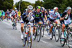 Team Giant-Shimano, Vattenfall Cyclassics, Hamburg, Germany, 24 August 2014, Photo by Thomas van Bracht