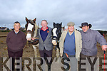 Tom Costello, Oscar McMahon, Pat Carmody, Mike Blake at the Abbeydorney Ploughing Match on Sunday