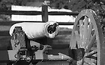 Bird in barrel of civil war Cannon, Bird in cannon barrel, Bennett,  Black and White Photographs, Black & White Photo's, B&W Photographs,  B&W, Black and White, Fine Art Photography, photography, photo, creative, creative vision, vision, artist, photographs fulfill a creative vision of artist, artist, Black and White Pictures, Fine Art Photography by Ron Bennett, Fine Art, Fine Art photography, Art Photography, Copyright RonBennettPhotography.com ©