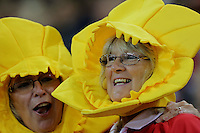 Pictured: Wales supporters wearing daffodils on their heads during the Wales v Italy game at the Millennium, Stadium, Wales, UK. Rugby World Cup, 05 September 2015