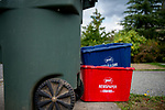 Bellingham is one of only a handful of cities in Washington state without single-stream recycling, so residents must sort their recyclable items into three separate bins. <br /> Photo by Daniel Berman