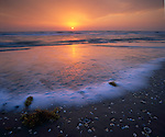 Padre Island National Seashore, TX<br /> Sunrise on the Texas gulf coast from the barrier island beach with scattered shells and seaweed exposed at low tide