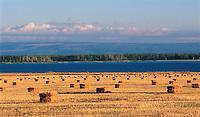 Hay Bales, Quake Lake