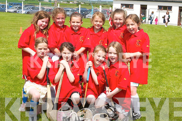 SMILES: Smiles by the Under-8s of Cillard as they get ready to play in the Camogie Blitz.at Lerrig on Sunday. Team: Eilish Harrington, Clodagh Walsh, Triona Curran, Sarah.O'Sullivan, Kate Austin O'Sullivan, Nessa Garty, Chantel Kenny, Lauren O'Grady, Sarah.Boyle and Elizabeth Meehan.