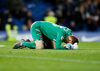 30th November 2019; Stamford Bridge, London, England; English Premier League Football, Chelsea versus West Ham United; Goalkeeper David Martin of West Ham United celebrates by falling to his knees after full time as West Ham United beat Chelsea 0-1 at Stamford Bridge  - Strictly Editorial Use Only. No use with unauthorized audio, video, data, fixture lists, club/league logos or 'live' services. Online in-match use limited to 120 images, no video emulation. No use in betting, games or single club/league/player publications