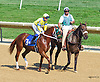 Morning Fire before The Strike Your Colors Stakes at Delaware Park on 8/5/15