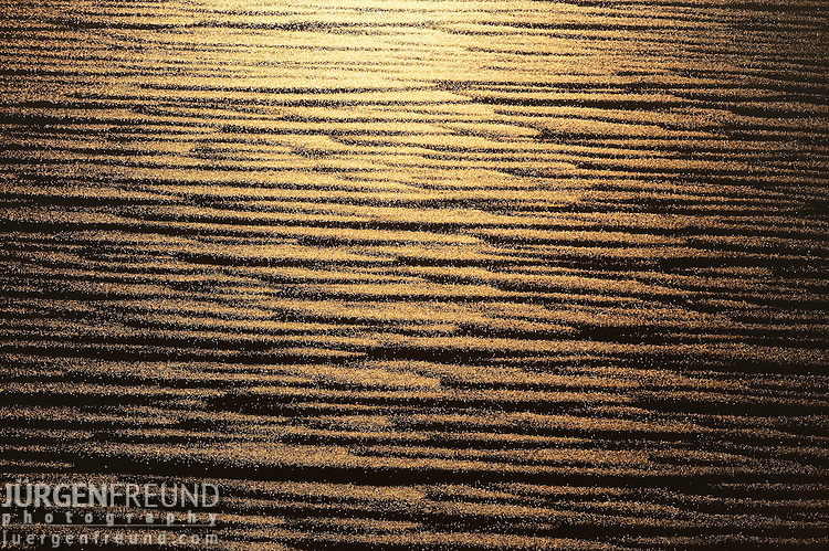 Aerial - The flooded Lake Eyre National Park.
