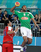 Algeria's Messaoud Berkous (r) and Egypt's Ali Zein during 23rd Men's Handball World Championship preliminary round match.January 15,2013. (ALTERPHOTOS/Acero) /NortePhoto