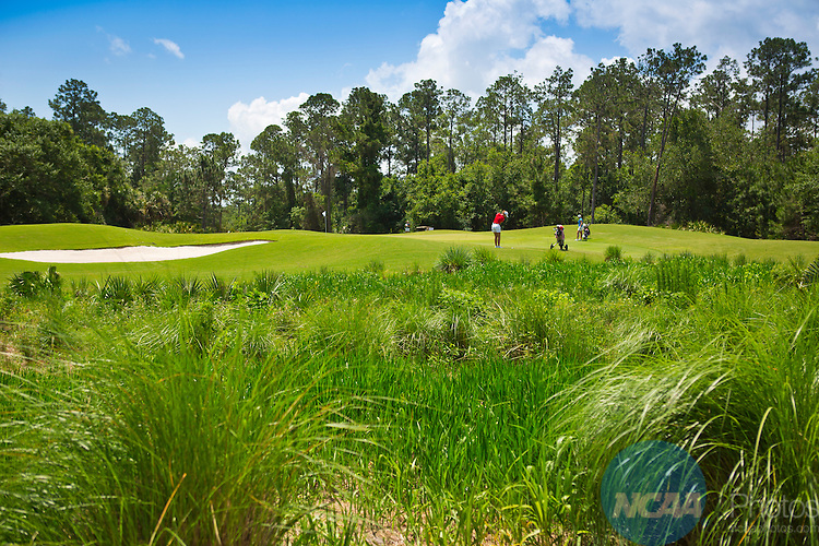 18 MAY 2013:  A golfer chips onto the green at the LPGA International Golf Course in Daytona Beach, FL during the Division II Women's Golf Championship.  Lynn University shot a +17 to win the national title by 3 strokes.  Matt Marriott/NCAA Photos
