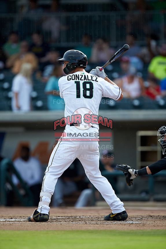 Jacob Gonzalez (18) of the Augusta GreenJackets at bat against the Kannapolis Intimidators at SRG Park on July 6, 2019 in North Augusta, South Carolina. The Intimidators defeated the GreenJackets 9-5. (Brian Westerholt/Four Seam Images)