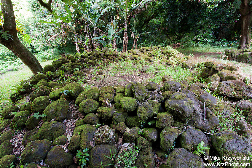 Stone remnants of the kitchen area at the Kaniakapupu Ruins aka King Kamehameha III Summer Home, Nu'uanu Valley, Oahu