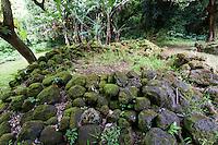Stone remnants of the kitchen area at the Kaniakapupu Ruins aka King Kamehameha III Summer Home, Nu'uanu Valley, Oahu